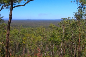 View from the top of the Mirray Lookout