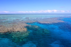 Ribbon reef No 9