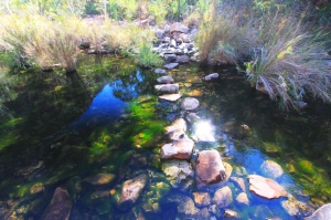 Stepping stones on the Emma Gorge walk